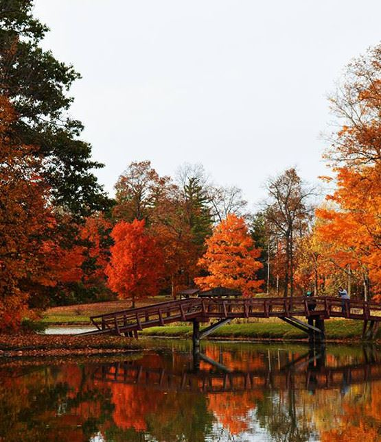 Red and orange fall trees with a bridge going over a lake